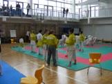 hinode_karate_torokbálint_jka_2014_002