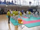 hinode_karate_torokbálint_jka_2014_003