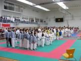 hinode_karate_torokbálint_jka_2014_005