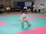hinode_karate_torokbálint_jka_2014_008