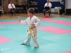 hinode_karate_torokbálint_jka_2014_011