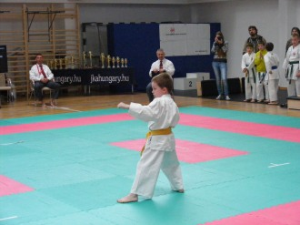 hinode_karate_torokbálint_jka_2014_012