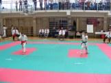 hinode_karate_torokbálint_jka_2014_019