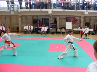 hinode_karate_torokbálint_jka_2014_020