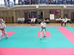 hinode_karate_torokbálint_jka_2014_022