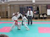 hinode_karate_torokbálint_jka_2014_028