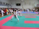 hinode_karate_torokbálint_jka_2014_029
