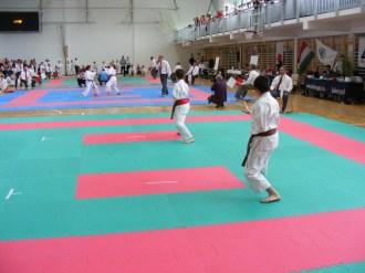 hinode_karate_torokbálint_jka_2014_031