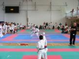 hinode_karate_torokbálint_jka_2014_051