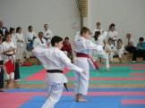 hinode_karate_torokbálint_jka_2014_052