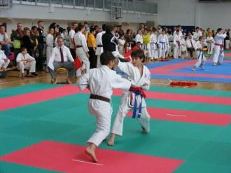 hinode_karate_torokbálint_jka_2014_053