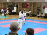 hinode_karate_torokbálint_jka_2014_072