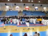 Hinode_Karate_Danok_2014_02