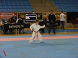 Hinode_Karate_Danok_2014_03