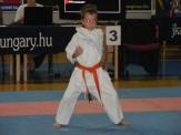 Hinode_Karate_Danok_2014_05