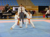 Hinode_Karate_Danok_2014_08