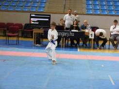 Hinode_Karate_Danok_2014_10