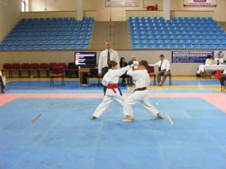 Hinode_Karate_Danok_2014_12