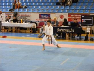 Hinode_Karate_Danok_2014_20