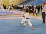 Hinode_Karate_Danok_2014_24