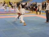 Hinode_Karate_Danok_2014_25