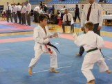 Hinode_Karate_Danok_2014_29