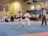 Hinode_Karate_Danok_2014_30