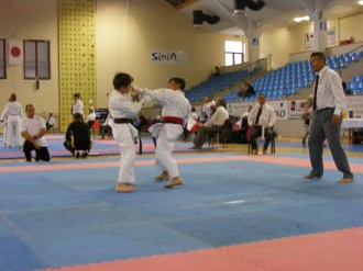 Hinode_Karate_Danok_2014_31