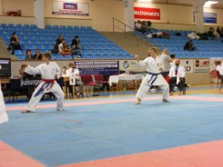 Hinode_Karate_Danok_2014_43