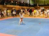 Hinode_IpponShobu_karate_2014_07