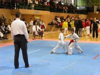 Hinode_IpponShobu_karate_2014_09