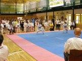 Hinode_IpponShobu_karate_2014_14