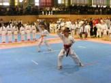 Hinode_IpponShobu_karate_2014_15