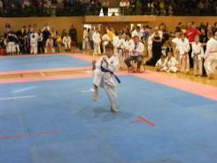 Hinode_IpponShobu_karate_2014_22