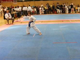 Hinode_IpponShobu_karate_2014_23