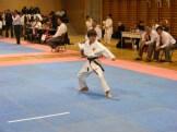 Hinode_IpponShobu_karate_2014_24