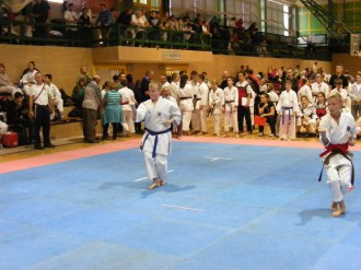 Hinode_IpponShobu_karate_2014_53