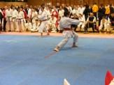 Hinode_IpponShobu_karate_2014_60