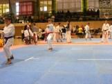 Hinode_IpponShobu_karate_2014_61