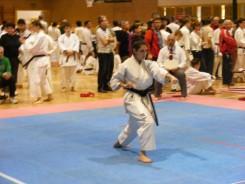 Hinode_IpponShobu_karate_2014_76