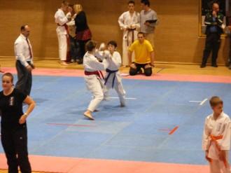 Hinode_IpponShobu_karate_2014_78
