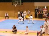 Hinode_IpponShobu_karate_2014_81