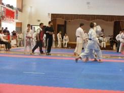 hinode_karate_atarashi_2014_65