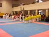 Hinode_karate_fujinaga_2014_004