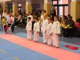 Hinode_karate_fujinaga_2014_005