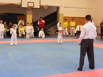 Hinode_karate_fujinaga_2014_009