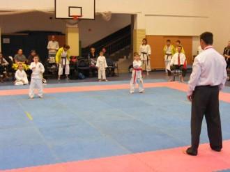 Hinode_karate_fujinaga_2014_012