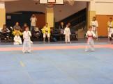 Hinode_karate_fujinaga_2014_013