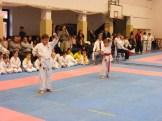Hinode_karate_fujinaga_2014_014