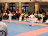 Hinode_karate_fujinaga_2014_016